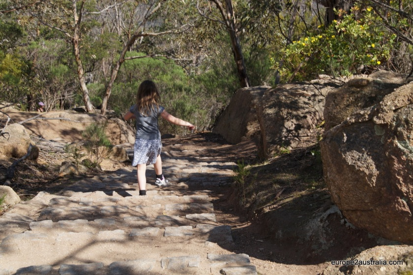 Hiking the Flinders peak walk