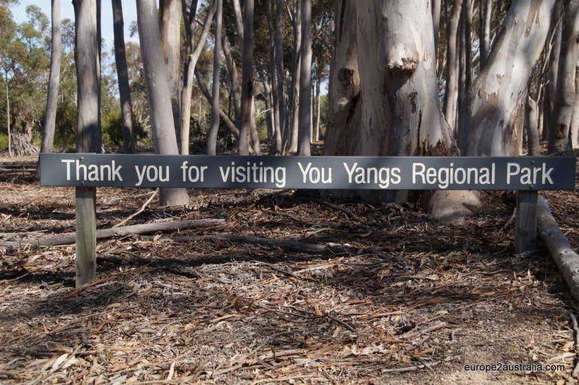 Goodbye You Yangs