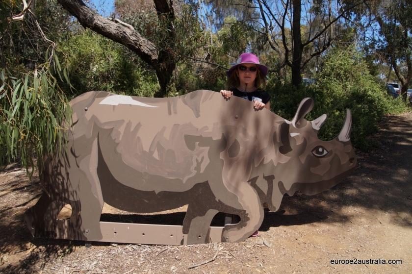 Luka behind rhino