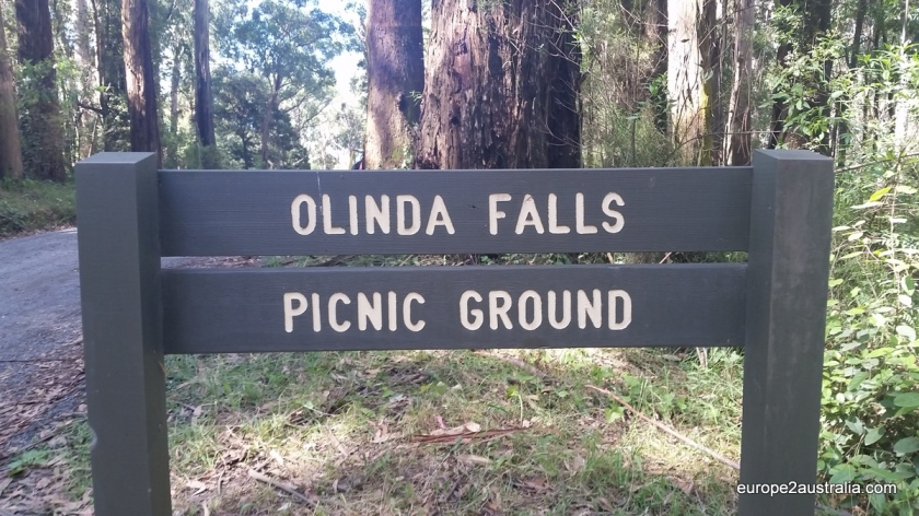 We're back to the Dandenongs, this time at Olinda falls.