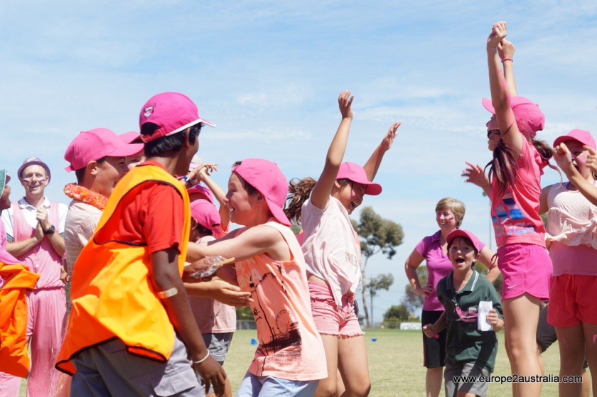 excitement-grade-six-won-pink-stump-day-cricket-match