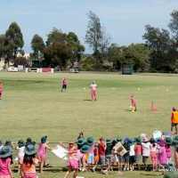 Pink Stomp Cricket match