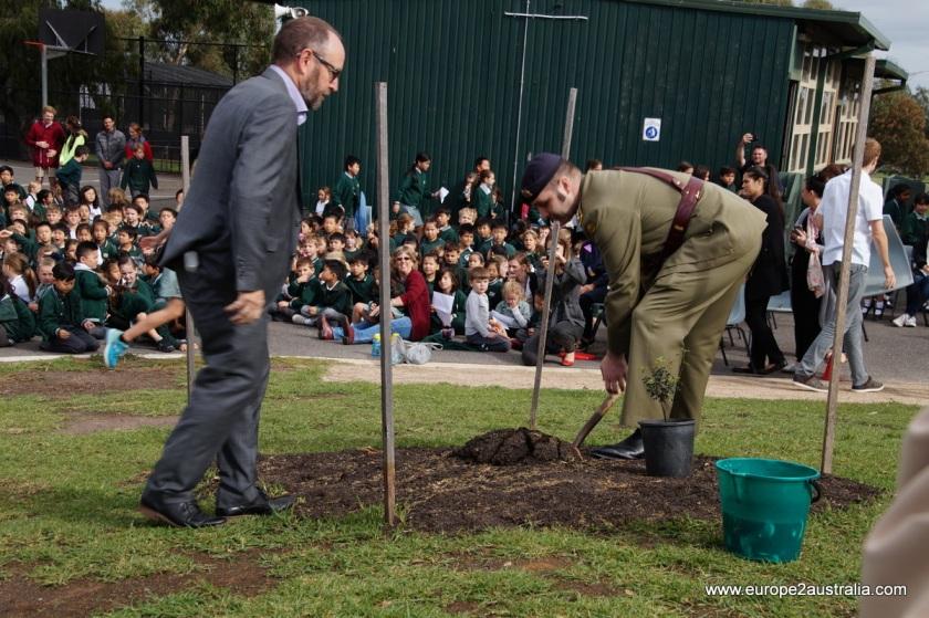 essex-heights-primary-school-tree-planting