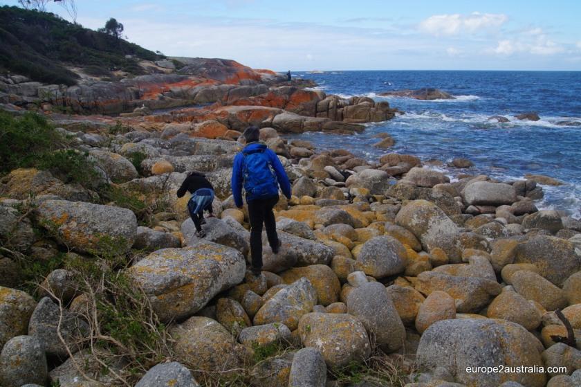 bichero-coastal-walk