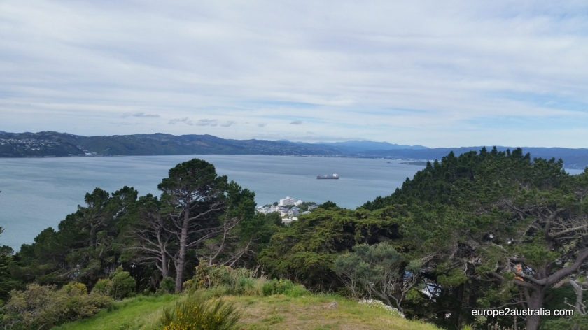 The bay is called Wellington Harbour.