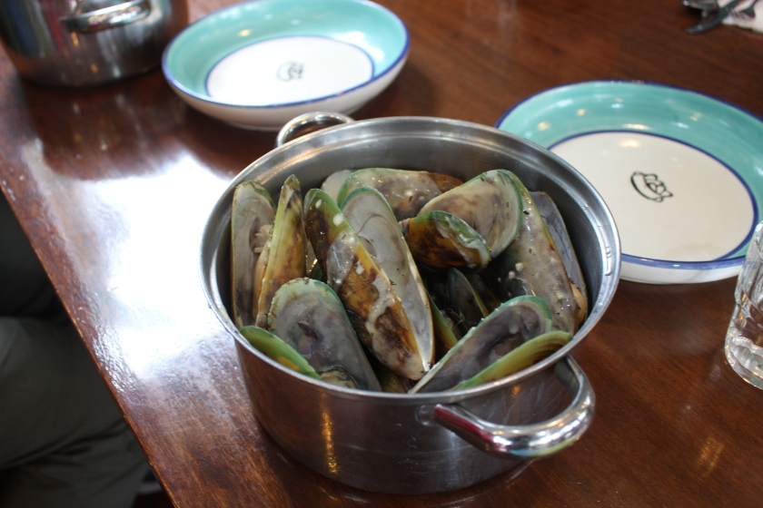 greenshell-mussels-in-a-pot