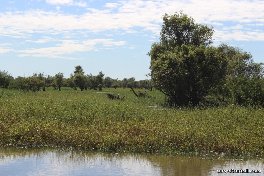 And the wetlands on either side of the river held their own beauty.